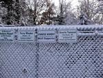 Snow covered Wolf enclosure picture Picture