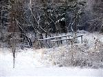 Snow covered bridge picture Picture