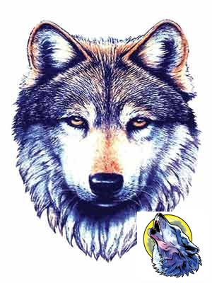tattoos of wolves pictures. Set of 2 Temporary Tattoos