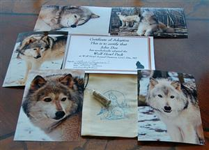 Symbolically adopt all of our Wolves