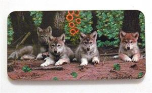 Wolf Howl Animal Preserve's Wolf Pup Pack