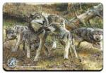 "View details for this ""Disorderly Conduct"" Wolf Magnet"