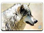 "View details for this ""Steadfast and Resolute"" Wolf Magnet"