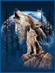 View details for this Harmony of Wolves Queen Blanket