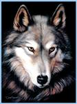 View details for this Indigo Wolf Queen Signature Blanket