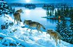 View details for this Moon Shadow Wolf Puzzle