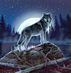 View details for this Mystic Wolf Queen Blanket