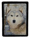 View details for this Wolf Framed Easel Magnet - Ohoyo