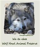 View details for this Wa-ta-chee Child's Wolf T Shirt - CS