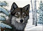 Wolf In Snow Paint by Number Kit
