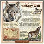 View details for this Wolf 3-D Tin Sign