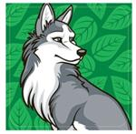 View details for this Compressed Wolf Towel