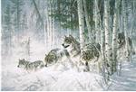 Wolves in Aspens Holiday Card