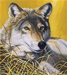 Yellow Eyes Wolf Puzzle