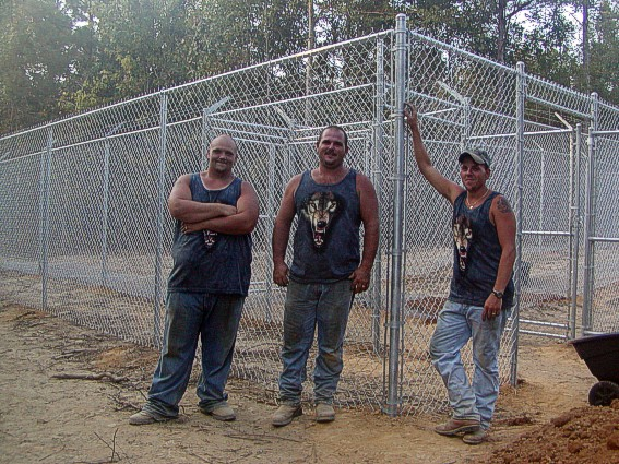 The New Wolf Pup Enclosure Is Finished By Maria Ferguson