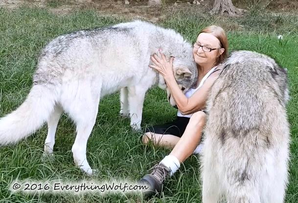 me-and-wolves.jpg