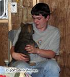 Wolf Pup being held picture Picture