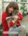 Girl Meets Wolf Pup picture Picture