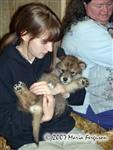 A Girl and a Wolf Pup picture Picture