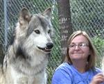 Wolf pictures, with Grandma Picture