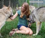 wolf pictures, visiting Picture