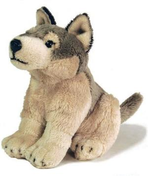 Cute little Plush Wolf from Jaag.  Now on sale.