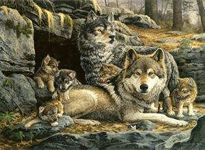 This is a large Wolf Puzzle, 1500 pieces.