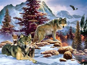 Beautiful Wolf puzzle.  Made in the USA.