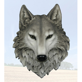 This Wolf is called Remus, World of Wonders Collection