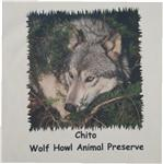 View details for this Chito Child's Wolf T Shirt - CXS