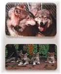 View details for this Wolf Family Magnets - set of 2