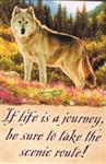 Life is a Journey Wolf Magnet