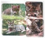 View details for this Wolf Pup Magnets - set of 4