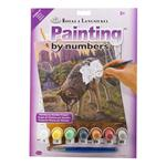 Reflections Wolf Paint by Number Kit