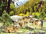 View details for this Wolf Creek Puzzle