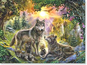 Set of 8 Wolf note cards