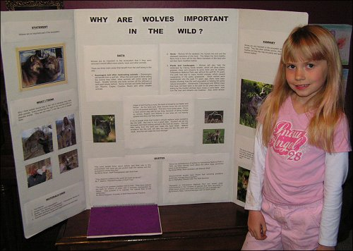Wolf Science Fair Project Takes Third Place