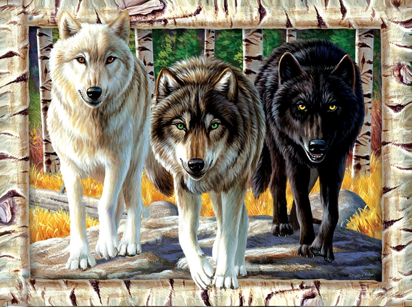 wolf-pack-colors-puzzle-fs.jpg