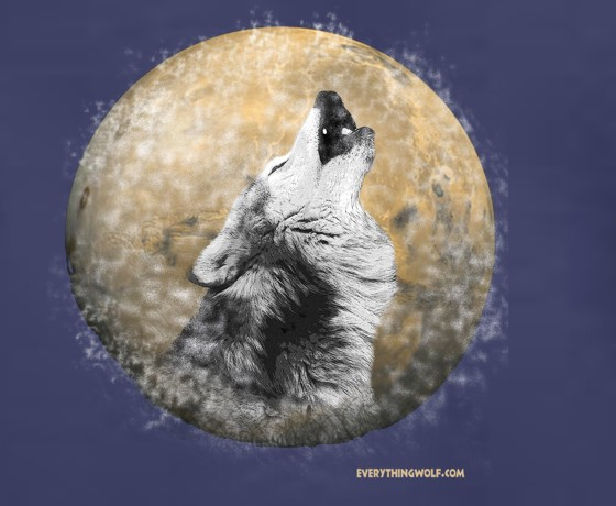 night-song-wolf-t-shirt-2.jpg