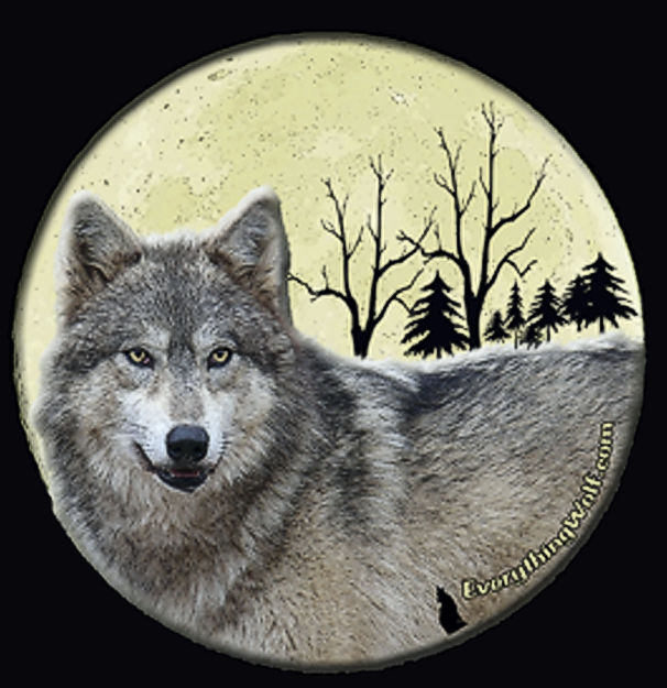 wolf-moon-nightshirt-2.jpg
