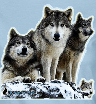 wolf-vigil-ladies-2.jpg