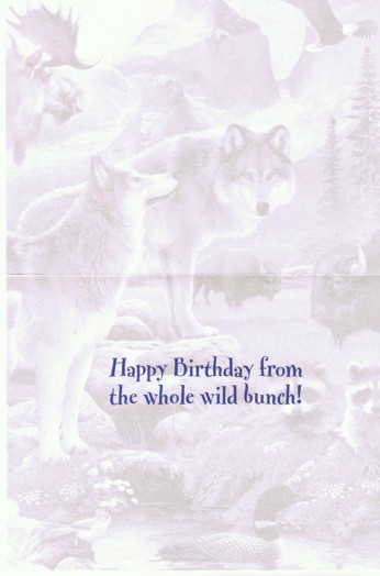 wild-bunch-birthday-card-inside.jpeg