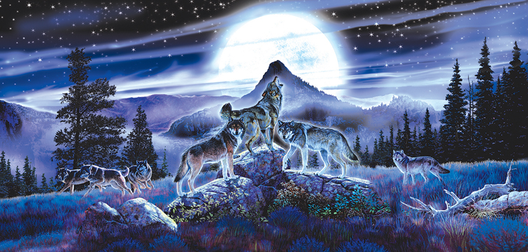 night-wolves-puzzle-1.jpg