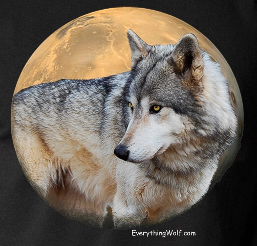 Alpha-Moon-Black-Wolf-Tshirt-4.jpg