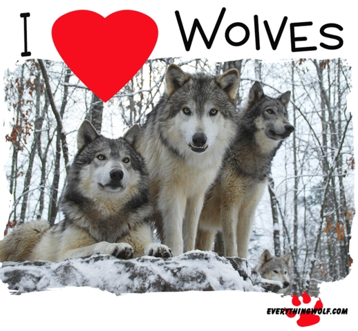 i-love-wolves-childs-long-sleeve-t-shirt-2.jpg
