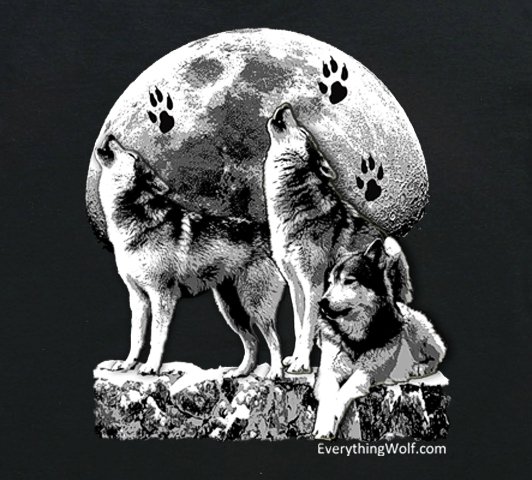 owning-the-moon-wolf-t-shirt-2.jpg
