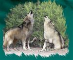 family-that-howls-child-wolf-tshirt-2.jpg